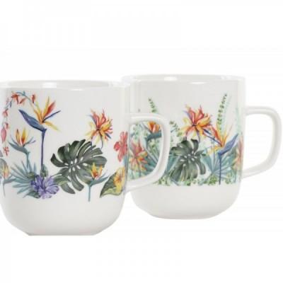 Stevia, hoja seca