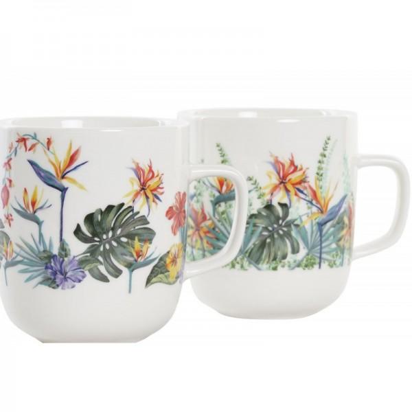 Stevia en hoja seca