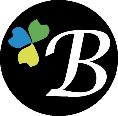 Bonisimo-logo.png